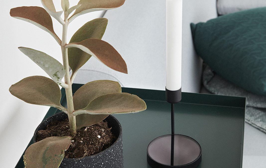 Ny inredning Möbler som maxar platsen för växter