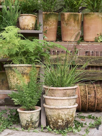 Patinerade lerkrukor från B Green hos Plantedli