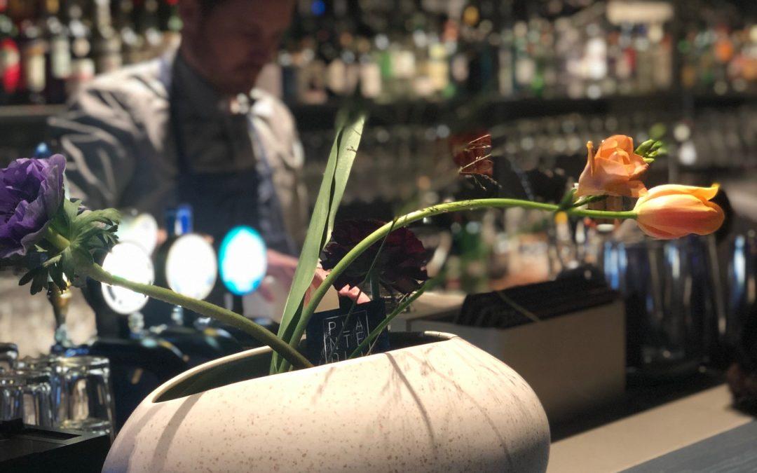 Få tulpaner att hålla länge – fem tips Så fixar du lång hållbarhet för dina tulpaner