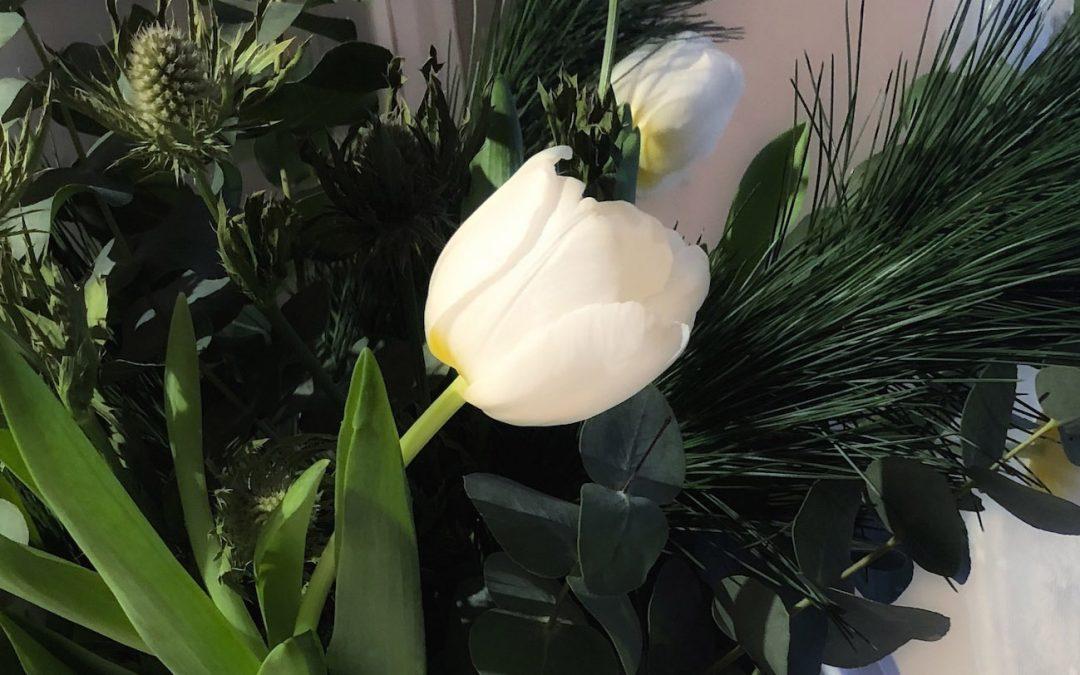 Fem tips för att få tulpaner i vas att hålla länge Så fixar du lång hållbarhet för dina tulpaner