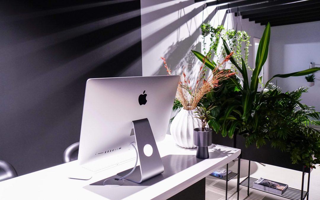 Uppdrag: inreda med växter och krukor Plantedli inreder lounge i Mitsubishi Concept Store