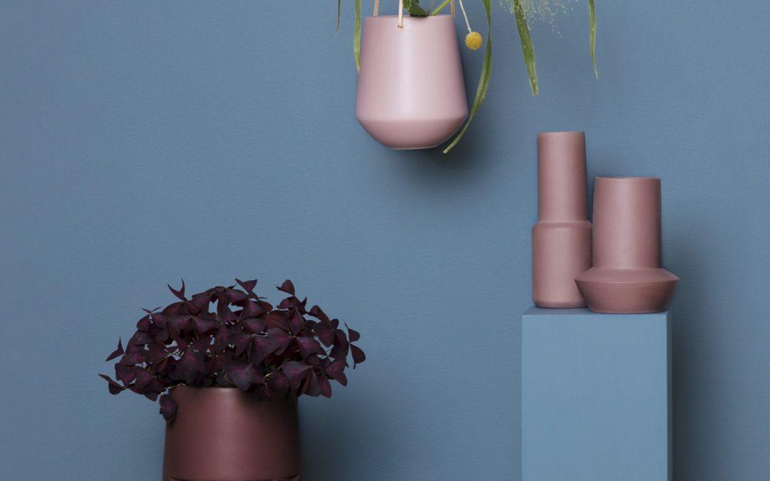 Plantedli – snygga krukor online firar två år!