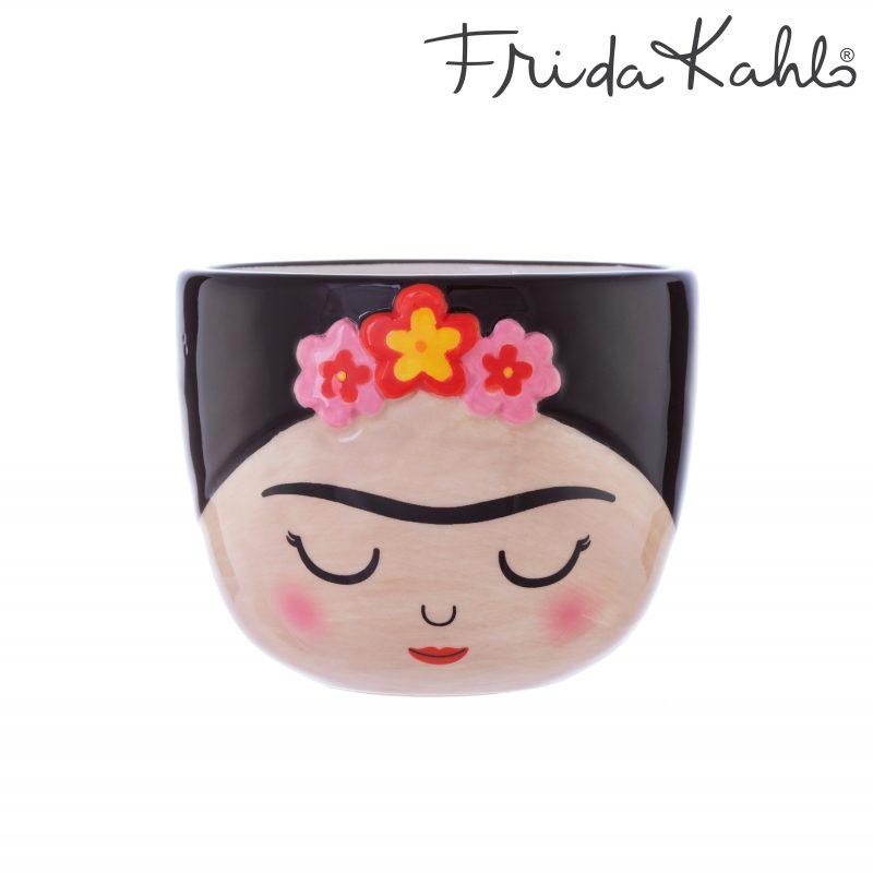 Frida Kahlo kruka mini