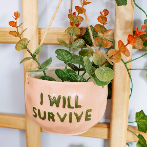 I will survive ampelkruka